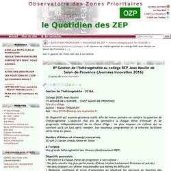 Gestion de l'hétérogénéité au collège REP Jean Moulin de Salon-de-Provence(...)