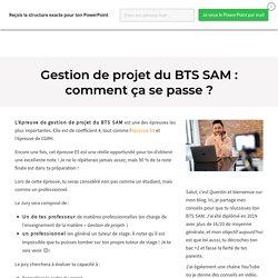 Gestion de projet du BTS SAM : comment ça se passe ?