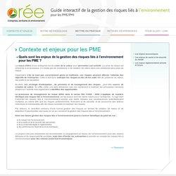 Quels sont les enjeux de la gestion des risques liés à l'environnement pour les PME?