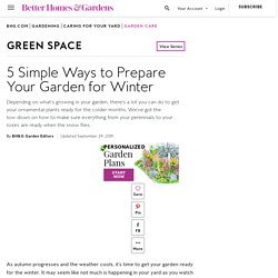 Get Your Plants Ready for Winter