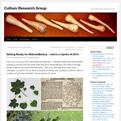 Getting Ready for #AdventBotany – here's a reprise of 2014