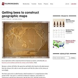 Bees construct geographic maps