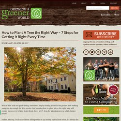 How to Plant A Tree the Right Way - 7 Steps for Getting it Right Every Time - Growing A Greener World®