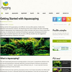 Getting Started with Aquascaping