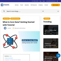 Getting started with core data programming