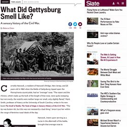 Gettysburg: What did it smell like? Vicksburg: What did it taste like? A sensory history of the Civil War.