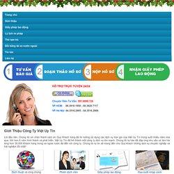 Giới thiệu các dịch vụ Việt Uy Tín cung cấp