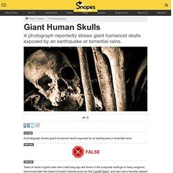 Giant Human Skulls