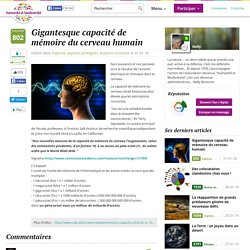 Gigantesque capacité de mémoire du cerveau humain