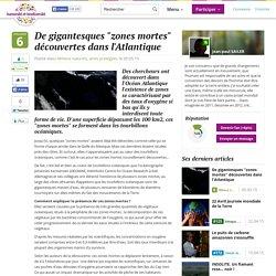 """De gigantesques """"zones mortes"""" découvertes dans l'Atlantique"""