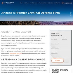 Combating Drug-Related Charges