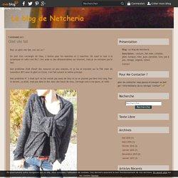 Gilet vite fait - Le blog de Netcheria