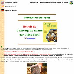 Gilles Fert - Introduction des reines