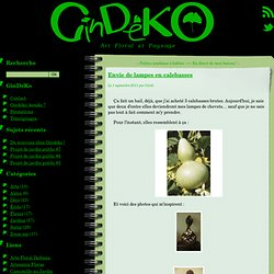 GinDéKo → Envie de lampes en calebasses