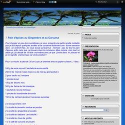 Pain d'épices au Gingembre et au Curcuma - Embruns et Parfums du Sud Sauvage