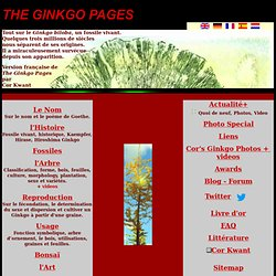GINKGO BILOBA -The Ginkgo Pages -Index Français