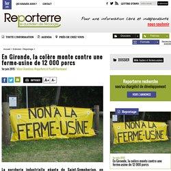 En Gironde, la colère monte contre une ferme-usine de 12 000 porcs