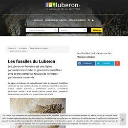 Gisements de fossiles remarquables du Luberon