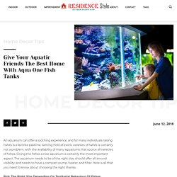 Give Your Aquatic Friends The Best Home With Aqua One Fish Tanks