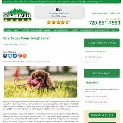 Give Grass Some Tough Love - BestYard.com
