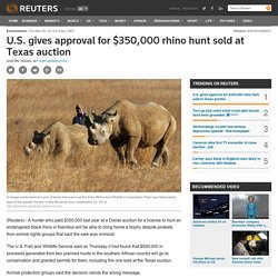 US gives approval for $350,000 rhino hunt sold at TX auction