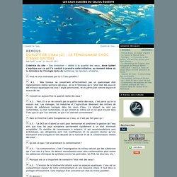 Qualité de l'eau (2) : le témoignage choc d'Anne Spiteri