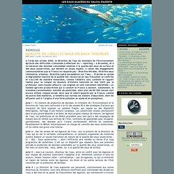 Qualité de l'eau (3) Nage en eaux troubles