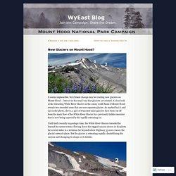 New Glaciers on Mount Hood?