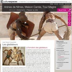Arènes de Nîmes, Maison Carrée, Tour Magne - Nîmes - gérées par Culturespaces