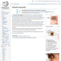 Glande lacrymale