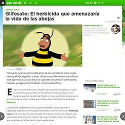 Glifosato: El herbicida que amenazaría la vida de las abejas