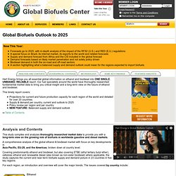 Global Biofuels Outlook: 2011 - 2020