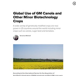 BLOG BIOTECH/PHARMACEUTICALS 24/01/11 Global Use of GM Canola and Other Minor Biotechnology Crops