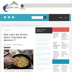 GLOBAL ET LOCAL 06/01/13 Des vers de farine dans l'assiette de demain?