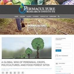 A Global Wiki of Perennial Crops, Polycultures, and Food Forest Sites