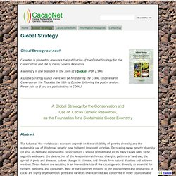 Global Strategy - cacaonet