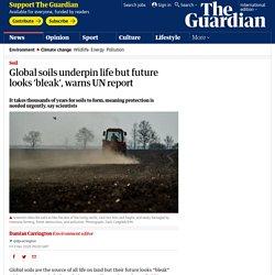 Global soils underpin life but future looks 'bleak', warns UN report