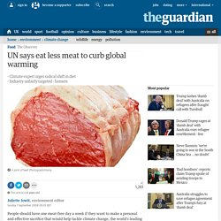 UN says eat less meat to curb global warming