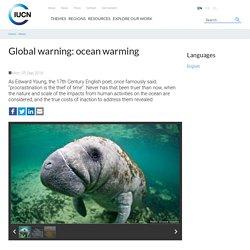 Global warning: ocean warming