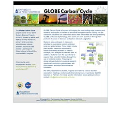 Globe Carbon Cycle
