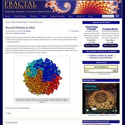 Fractal Globules in DNA : FractalFoundation.org