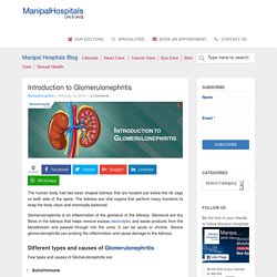 Introduction to Glomerulonephritis