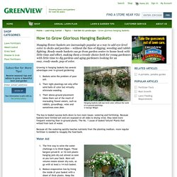 How to grow glorious hanging baskets - GreenView