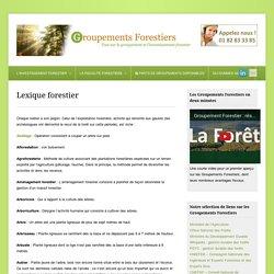 Lexique foret : glossaire et définition domaine forestier