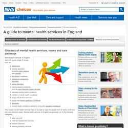 Glossary of mental health services - NHS services