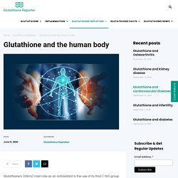 Glutathione and the Human Body