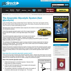 The Anaerobic Glycolytic System (fast glycolysis) — PT Direct