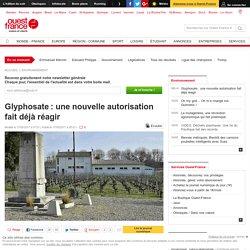 Glyphosate: une nouvelle autorisation fait déjà réagir