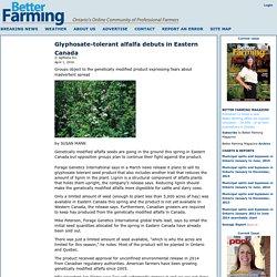 BETTER FARMING 01/04/16 Glyphosate-tolerant alfalfa debuts in Eastern Canada