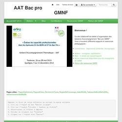 GMNF : PagePrincipale